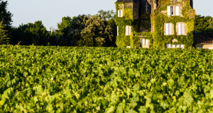 Vine-clad chateaux overlooking vineyard in Bordeaux, France.